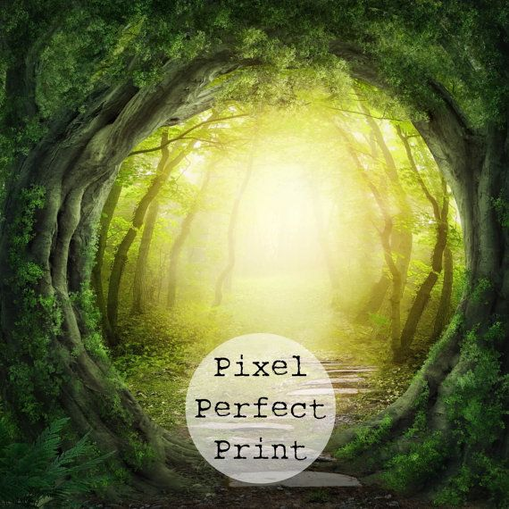 "Thank you for visiting Pixel Perfect!  Listing is for 6ft x 6ft ""Enchanted Forest    :::Our Product:::  Here at Pixel Perfect, we strive to"