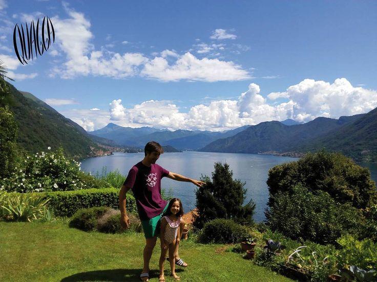 #quagga en el Lago de Como. Italia.