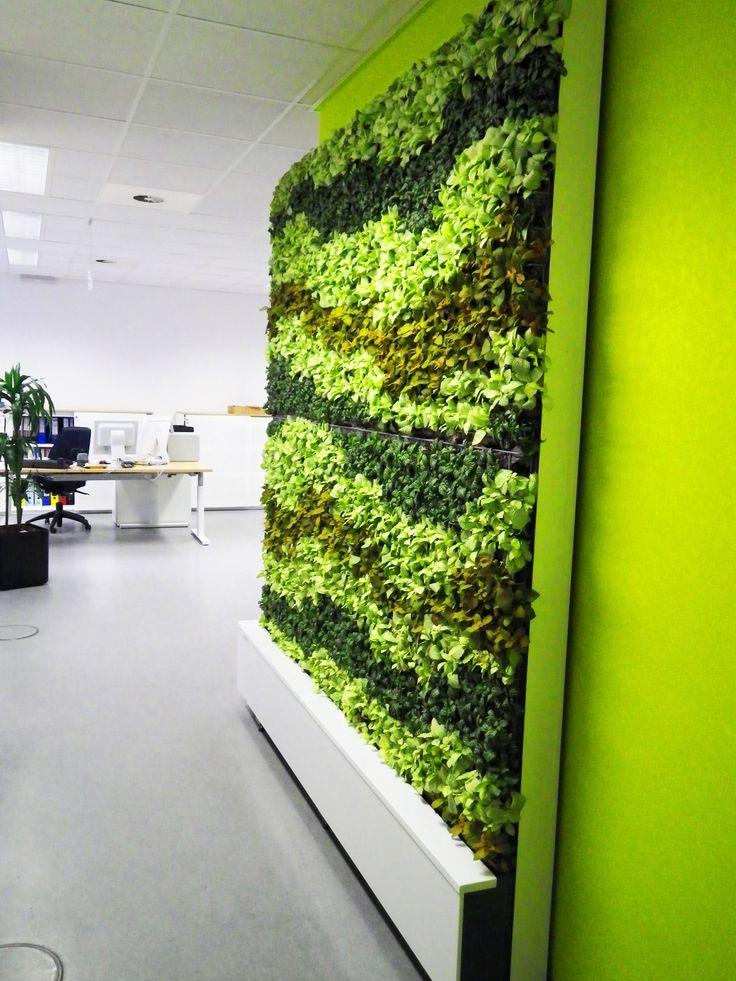 Levende groene muur zowel geschikt voor hydro- en grondcultuur, staan of  hangplanten  Green Walls