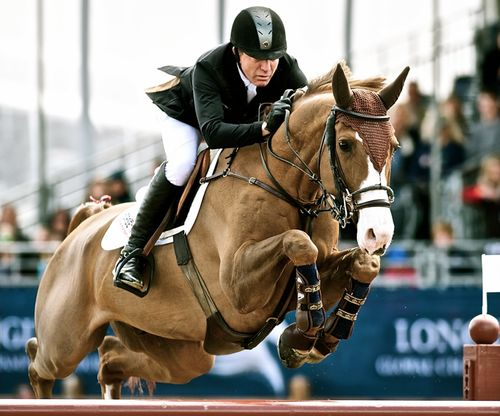 Michael Whitaker and Viking. - one of my favourite jumpers
