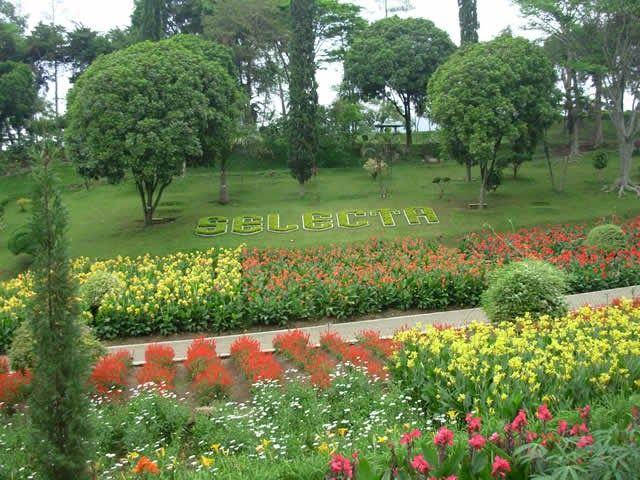 30 Gambar Pemandangan Alam Taman Bunga 8 Taman Bunga Indonesia Yang Tak Kalah Cantik Dari Taman Download Alam Mengembang Jadi Gur Di 2020 Pemandangan Taman Gambar