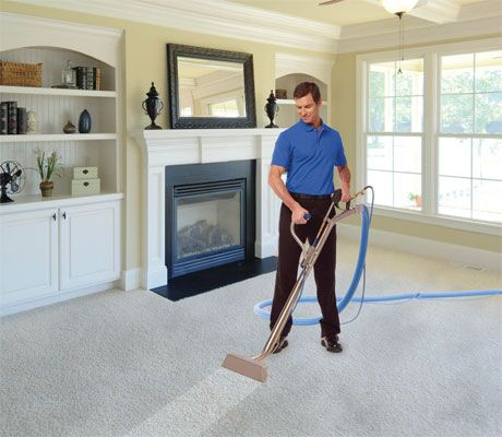 283 Best Carpet Steam Cleaner Steam Lux Is A Wonderful