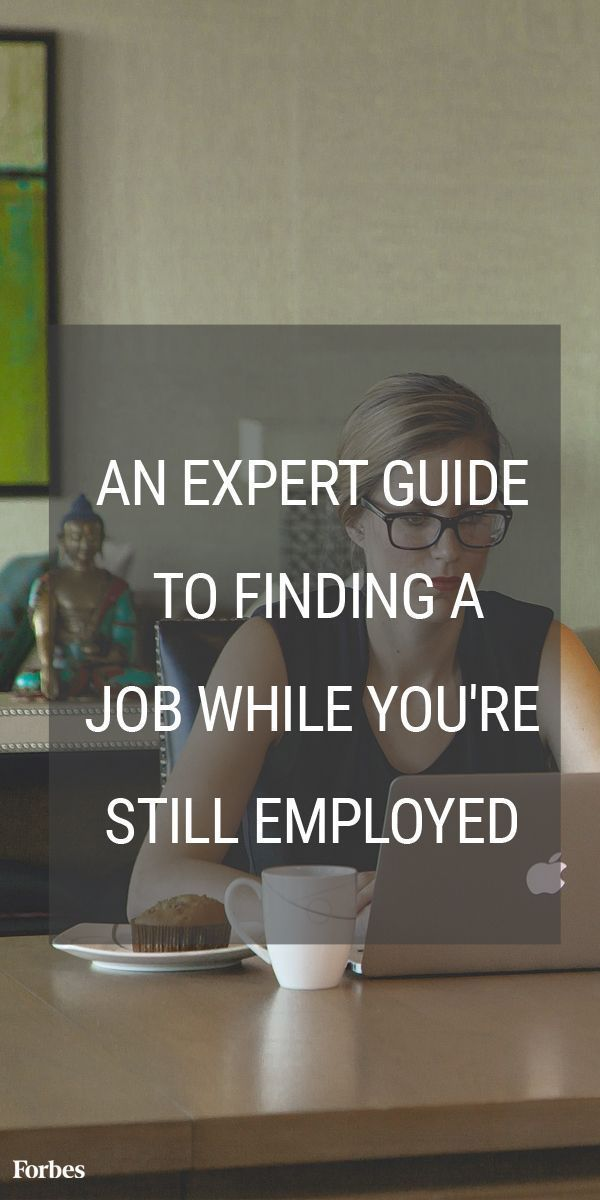 The 3 Month Guide To Running A Job Search (While You Still Have A Job)