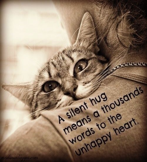 A silent hug means a thousand words to the unhappy heart
