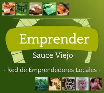 Diseño banner red emprender Sauce Viejo