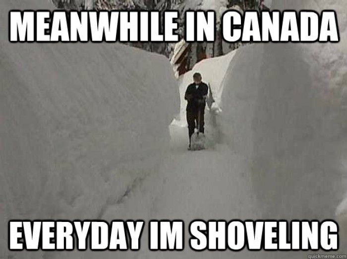 Meanwhile in Canada ~ love the snow!