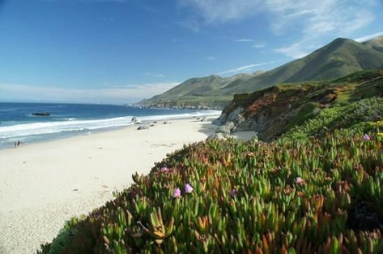 Garrapata Beach, right off of Highway 1, offers hiking trails with beautiful sweeping views of the Central Coast.
