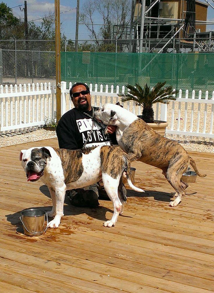Parolee dogs