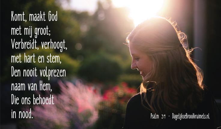Komt, maakt Godmet mij groot; Verbreidt, verhoogt,met hart en stem, Den nooit volprezennaam van Hem, Die ons behoedtin nood. Psalm …