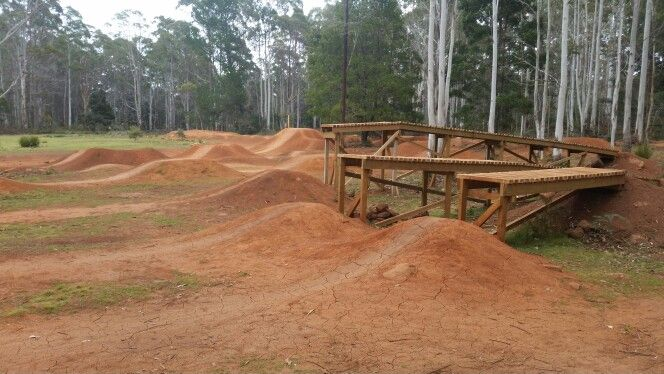Hollybank jumps track