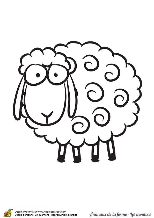 Coloriage d un mouton stupide coloriages animaux de la - Mouton en dessin ...