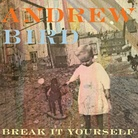first listen album streaming on NPR right now for Andrew Bird's latest album -- love his music!