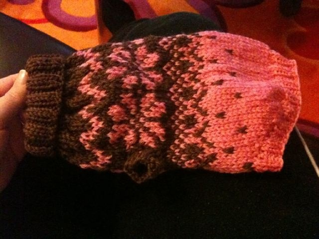 Knitted sweather for a chiahuahua.