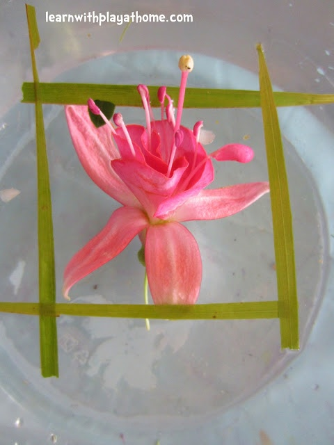 Learn with Play at home: Floating Art (Art and Science Combined)