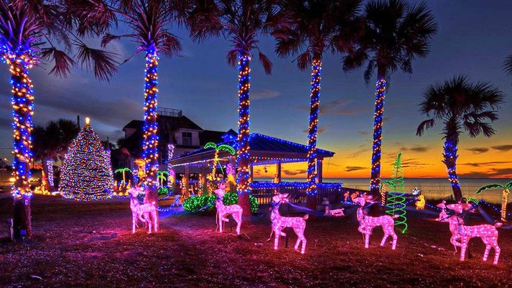 Christmas lights and decorations on palm trees and beach in Mexico