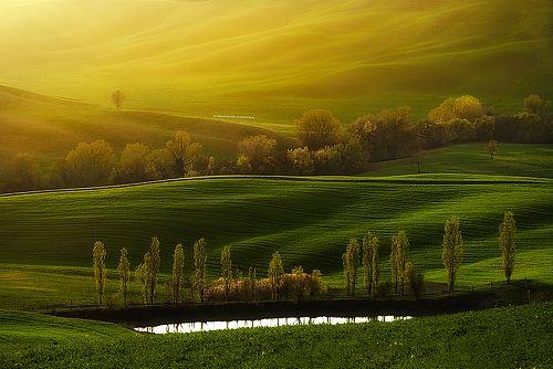 Автор фотографии - фотограф профессионал Jaroslaw Pawlak (Jarek). warmth around us. Страна Италия. , тоскана, val d\\\\\\\'orcia, весна