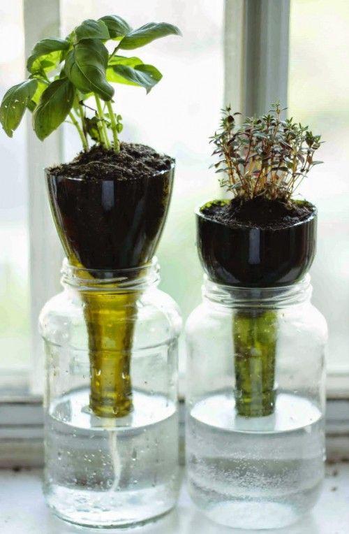 vaso-autoinnaffiante-fai-da-te-riciclare-una-bottiglia-di-plastica-diy-pot-bottle-selfwatering-5