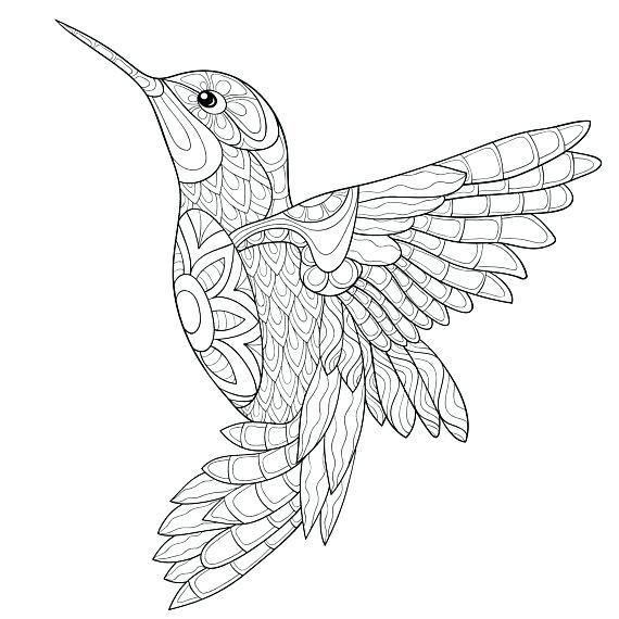 Small Hummingbird Card To Color Coloring Rocks Bird Coloring Pages Hummingbird Colors Bird Drawings
