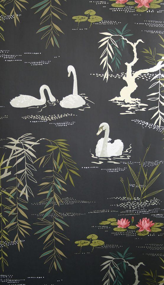 Swan Lake - NCW4020-04