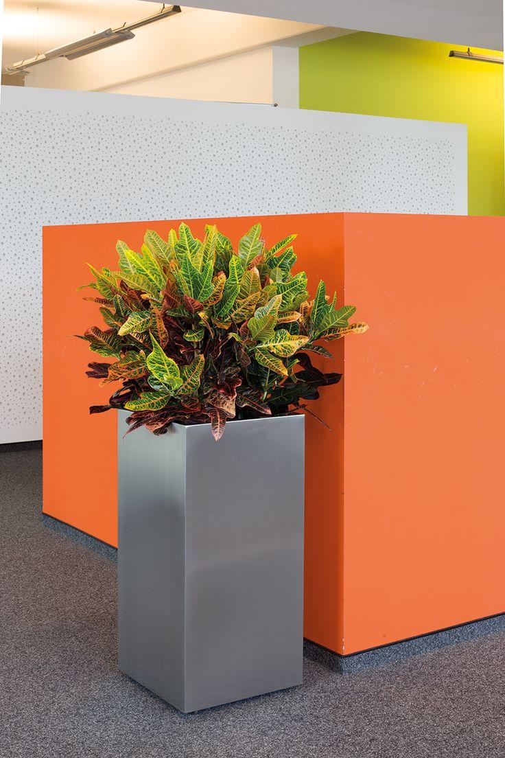 sterling planter supplied by koberg