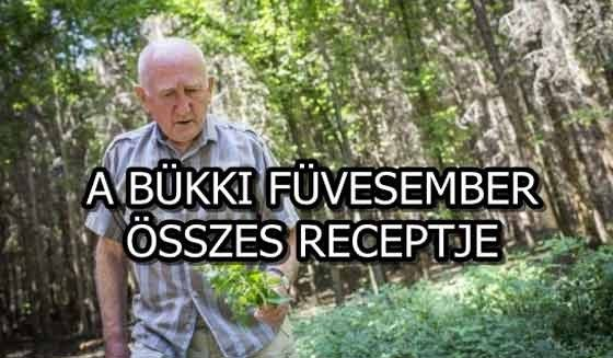 """Gyuribácsi, ismertebb nevén a """"bükki füvesember"""" a gyógynövények szakértője. Színte mindenre tud valami természetes..."""