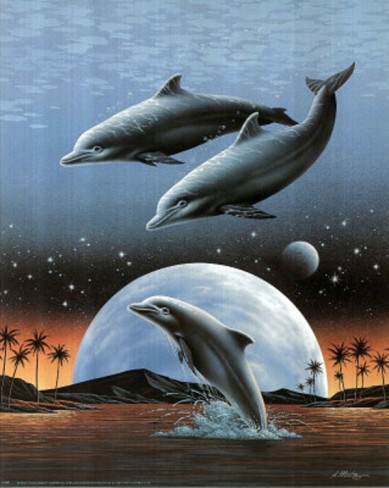 Dolphins Jumping in Moonlight Art Print POSTER Mini Poster