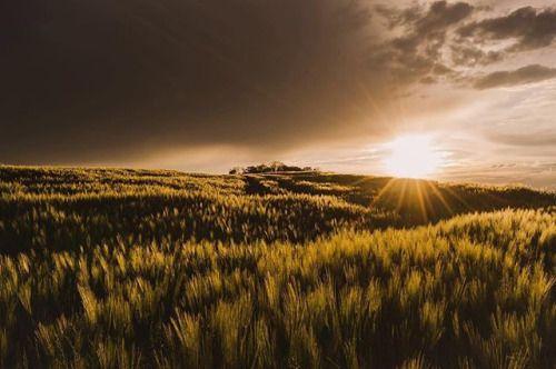Vor dem Sturm. Bild: @gerivilliger. Nikon D3300 Nikkor 18-55 mm | 18mm f/18 1/80s ISO 100 #nikonswitzerland     #nikon #nikon_photography #nikonlove #nikonistas #nikoncamera #nikonforever #nikonphotographers #nikonofficials #nikonphoto #nikonearth_ #inlovewithswitzerland via Nikon on Instagram - #photographer #photography #photo #instapic #instagram #photofreak #photolover #nikon #canon #leica #hasselblad #polaroid #shutterbug #camera #dslr #visualarts #inspiration #artistic #creative…