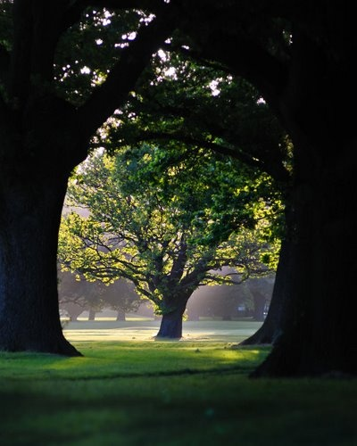 North Hagley Park, Christchurch New Zealand...