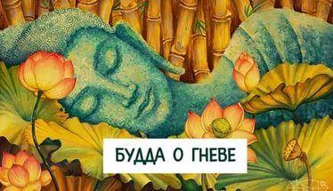 Будда о гневе   Гаутама Будда проходил мимо одной деревни, в ней жили противники буддистов. Жители выскочили из домов, окружили его и начали оскорблять. Ученики Будды начали сердиться и уже готовы были дать отпор, но присутствие Учителя действовало успокаивающе. А то, что он сказал, привело в замешательство и жителей деревни и учеников.   Он повернулся к ученикам и сказал: - Вы разочаровали меня. Эти люди делают свое дело. Они разгневаны. Им кажется, что я враг их религии, их моральных…