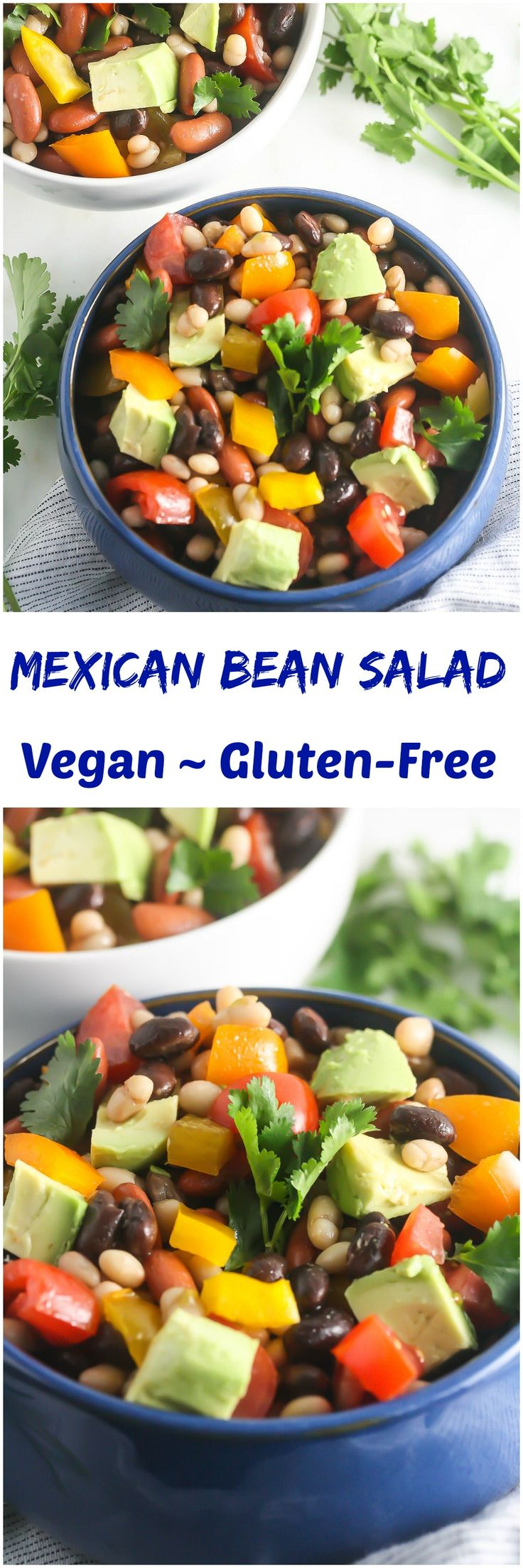 This Mexican Bean Salad is packed with plant-based protein and fiber and is naturally gluten and grain-free!