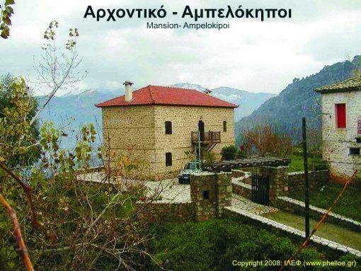 The village Ampelokipoi, on the returning way to Aigeira.