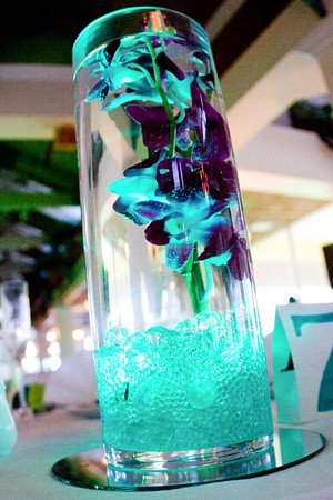 I did the centerpieces myself with submersible LED's in my wedding colors and orchids
