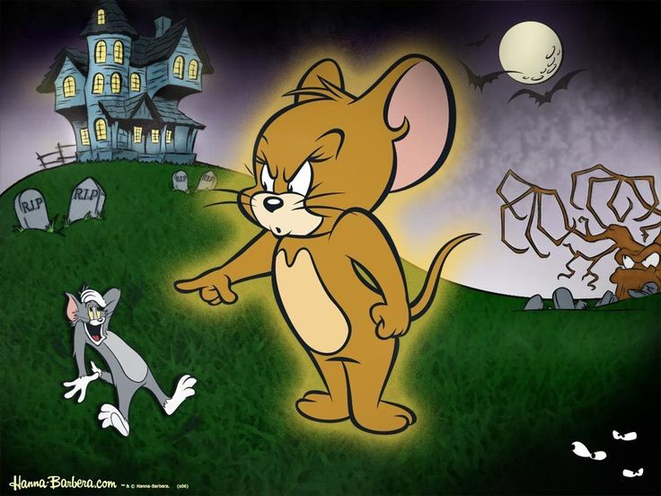 Tom And Jerry Friends Hd Wallpaper × Tom And Jerry Images