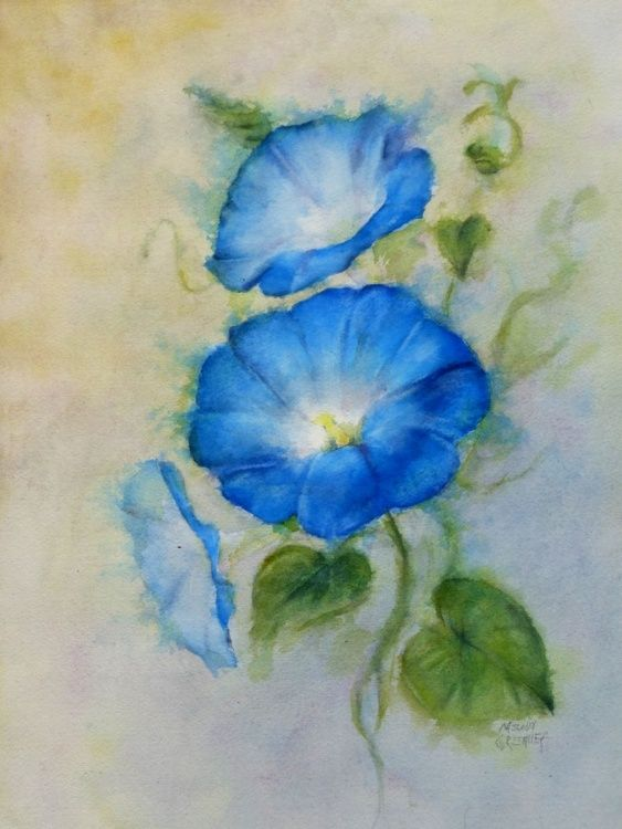 "Watercolor painting by Melody Greenlief ""Morning Glory"" for Sale!"