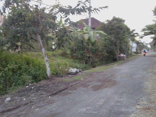 dijual tanah 3,16 are. lebar 18 mtr. harga 750 jt (global/keseluruhan). lokasi : pinggir jalan utama bongan - tabanan hub : 082144230777