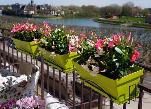 Jardinière Roméo   Poetic Jardin  La Jardinière Roméo Avec Son Support  Universel Su0027adapte