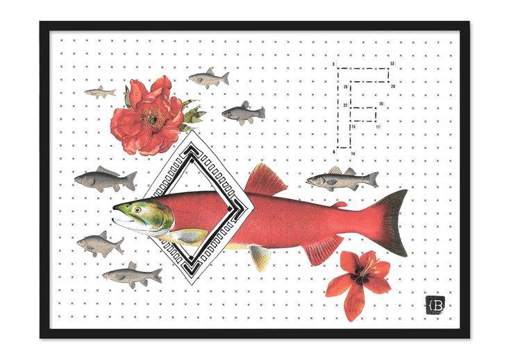 Fish by Kinga Berkowska; collage papercuting