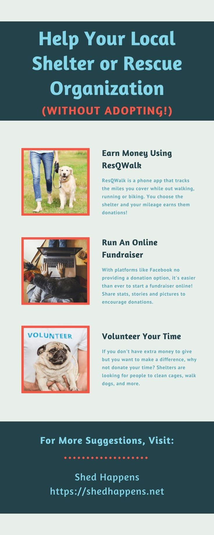 14 Ways To Help Your Local Shelter Or Rescue Organization Without Adopting In 2020 Animal Rescue Fundraising Animal Shelter Donations Animal Rescue Ideas