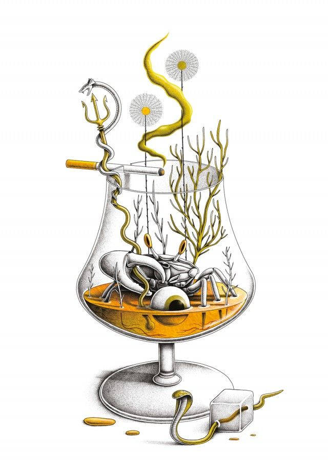 Nicolas Barrome Illustrations