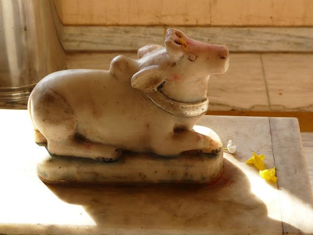 Cow statue at temple - Tavdi, Gujarat, India. © 2016 a kiwindian couple.