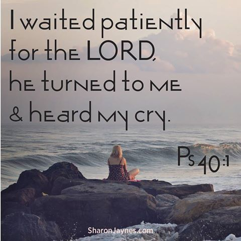 Psalm 40:1 I waited patiently for the Lord; he inclined to me and heard my cry.