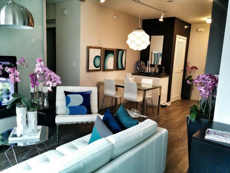 Modern San Fransisco California Living Room