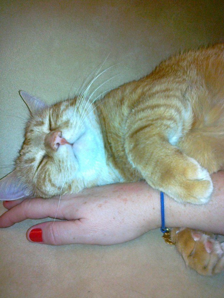 Don't mind using your hand as a pillow for a while.
