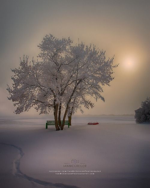 Wintertime Landscape ~ Photography by Ian McGregor