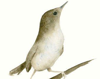 Disegno a matita di uccello Nightingale. di TheKestrelAndTheSea