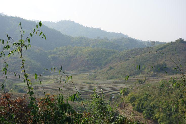 Chiang Rai. Thailand.