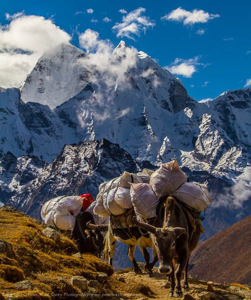 a photographer's guide to visiting nepal.