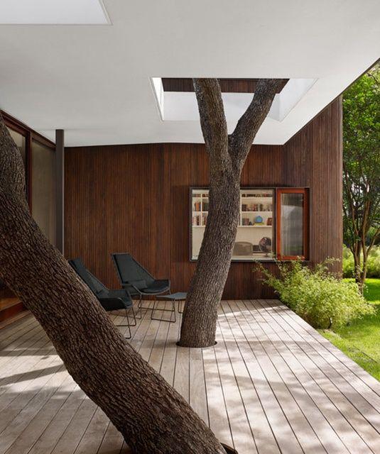 6 construcciones donde se prefirió salvar el árbol - Ecoportal.net