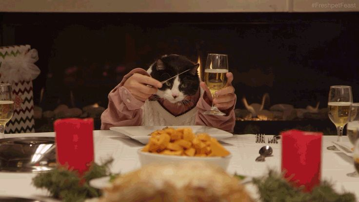 Freshpet, a natural pet food company, launched a short video this week with animals playing the parts of holiday dinner guests.