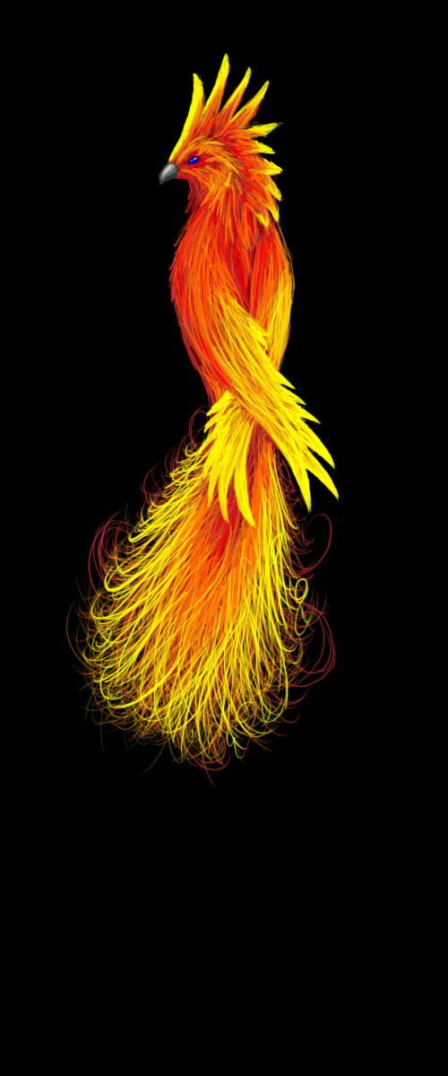 98 best Phoenix images on Pinterest | Phoenix bird ...